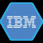 IBM Common Stock